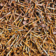 Rusty Nails Abstract Art Poster