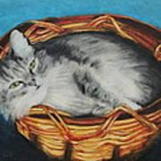 Sabrina In Her Basket Poster