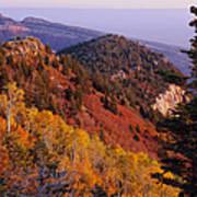 Saddle Mountain Autumn-sq Poster
