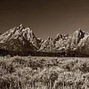 Sagebrush And Tetons Poster