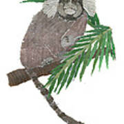 Tamarin Monkey Art Poster