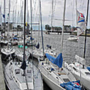 Sail Boats Docked For The Night Poster