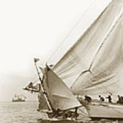 Sail Boats Little Anne And Virginia Collision On San Francisco Bay Circa 1886 Poster
