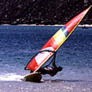 Sailboarder Poster