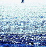 Sailboat And Swimmer Poster by Brian D Meredith