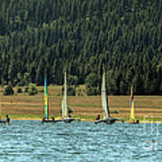 Sailboat Regatta Cascade Lake Poster