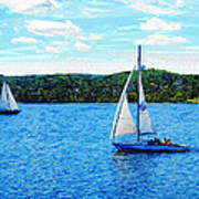 Sailboats In The Summer Poster