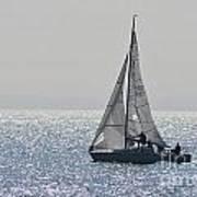 Sailing Free Poster