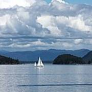 Sailing In The San Juans Poster