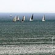 Sailing On Lake Erie Poster