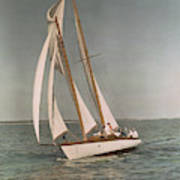 Sailing, One Of The Many Sports Poster