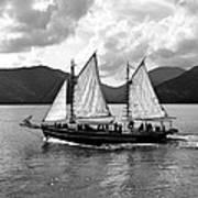Sailing Ship Black And White Poster