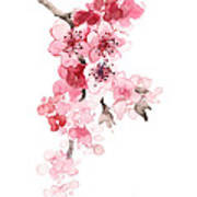 Sakura Flowers Watercolor Art Print Painting Poster