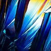 Salicylic Acid Crystals In Polarized Light Poster