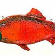 Salmon 1 Poster