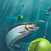 Salmon Dowrigger Poster