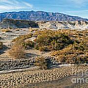 Salt Creek Death Valley National Park Poster