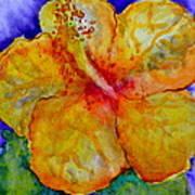 San Diego Hibiscus Study IIi Upward Facing  Poster