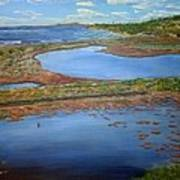 San Elijo Lagoon Poster