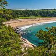 Sand Beach In Acadia Poster