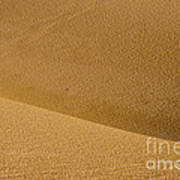 Sand Curves Poster