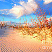 Sand Dune And Sea Oats At Sunset Poster