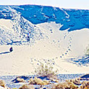 Sand Dune Bordering Salt Creek Trail In Death Valley National Park-california Poster