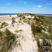 Sand Dunes Separation Poster