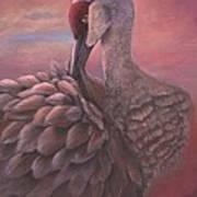 Sandhill Crane  Poster