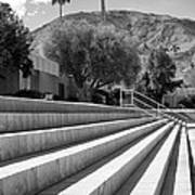 Sandpiper Stairs Bw Palm Desert Poster