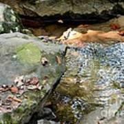 Sandstone Boulders At Hurricane Branch Poster