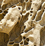 Sandstone Rock Formation Two At Big Sur  Poster by Artist and Photographer Laura Wrede