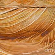 Sandstone Swirls Poster