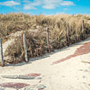 Sandy Dunes In Holland Poster
