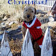 Santa Dog-2 Poster