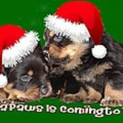 Santa Paws Is Coming To Town Christmas Greeting Poster