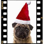 Santa Pug - Canine Christmas Poster