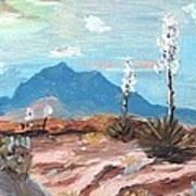 Santa  Rita Mts. Near Tucson Arizona Poster