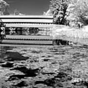 Saucks Bridge - Pond - Bw Poster