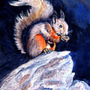 Saucy Squirrel Poster