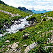 Savage River From Savage River Trail In Denali Np-ak    Poster