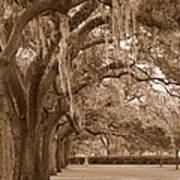 Savannah Sepia - Emmet Park Poster
