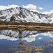 Sawatch Range In Spring Poster