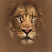 Scarface Lion Art Print By Robert Foster