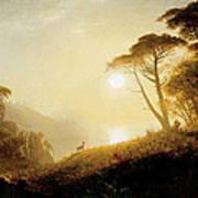 Scene In Yosemite Valley Poster