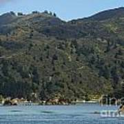 Scenery On Cook Strait Poster