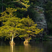 Scenic Beavers Bend Poster