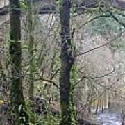 Scenic View Arch Bridge Poster