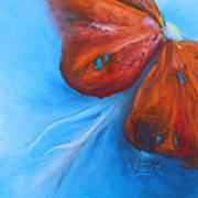 Schmetterlingsblume Poster by Karen  Kreuzer