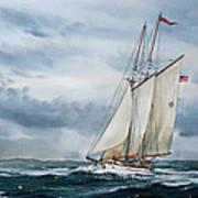 Schooner Adventuress Poster by James Williamson